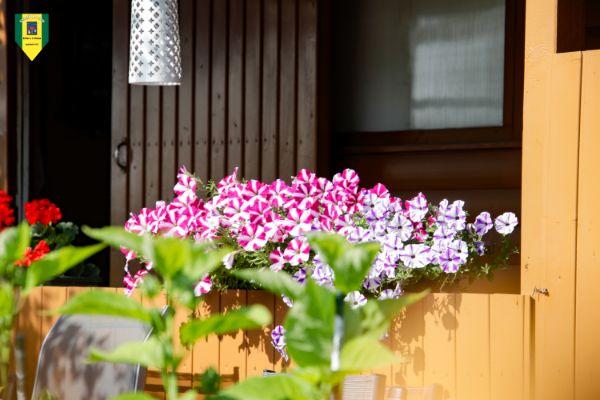 photo_1563443832115